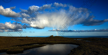 passing shower-1299 