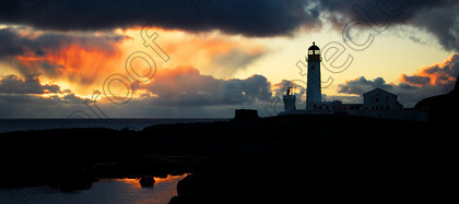 IMGP4761a 